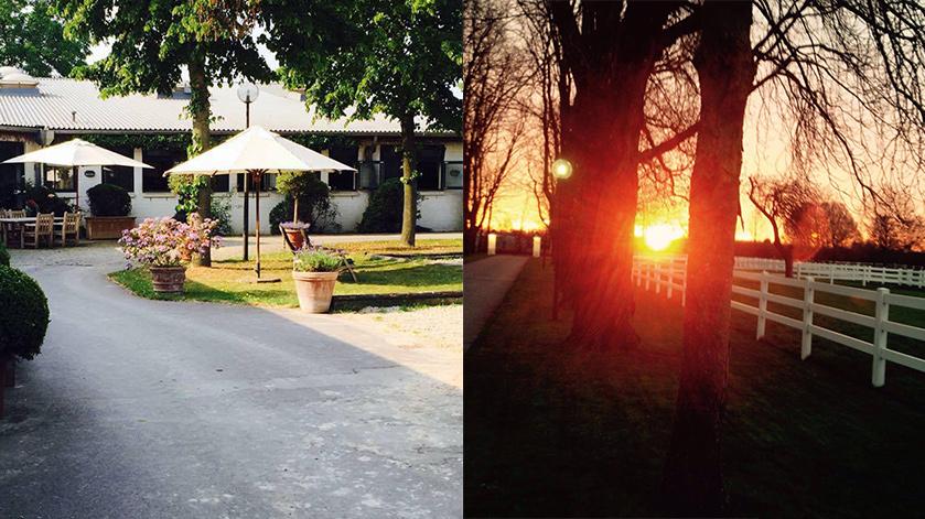 Stajnia i zachód słońca w stajni