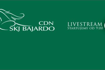 CDN Bajardo livestream II dzień